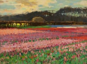 Ben Viegers | Blooming tulip fields