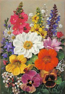 Jan Voerman jr. | Kleurrijke bloemen