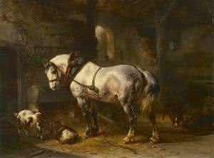 Wouterus Verschuur | Schimmel in een stal