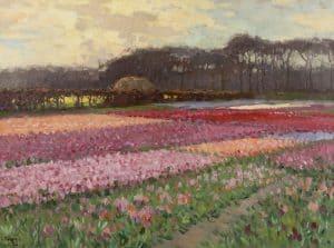 Ben Viegers   Bollenvelden in volle bloei