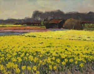 Ben Viegers   Narcissen in volle bloei
