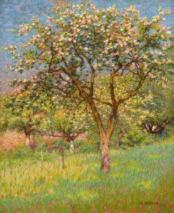 Co Breman | Bomen in bloei
