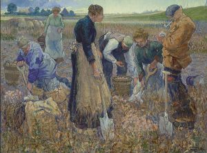 Harmen Meurs | Aardappelrooiers